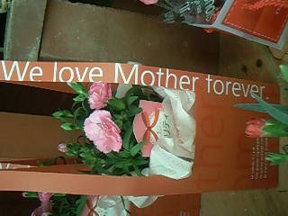 we love mother forever